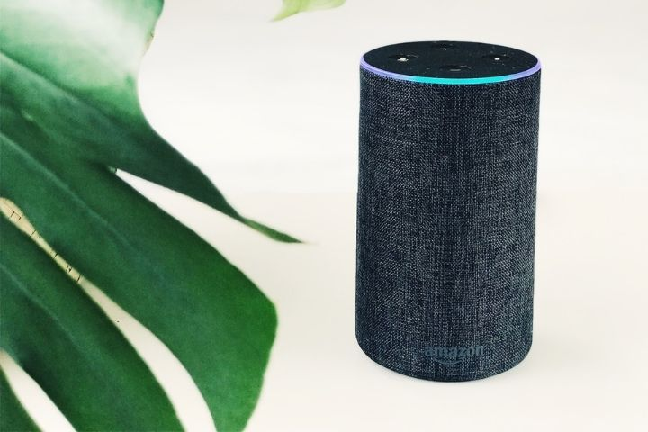 How The Google Smart Speakers Compare To Each Other