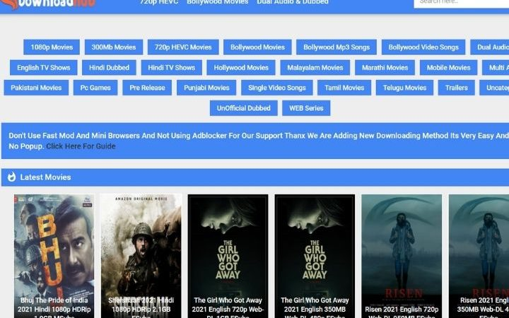 DownloadHub: A Hub To Download All The Latest Movies From All Popular Languages
